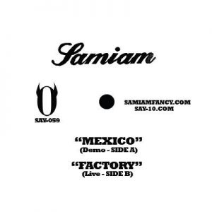 SAY-059: Samiam - Charity Series Flexi 7""